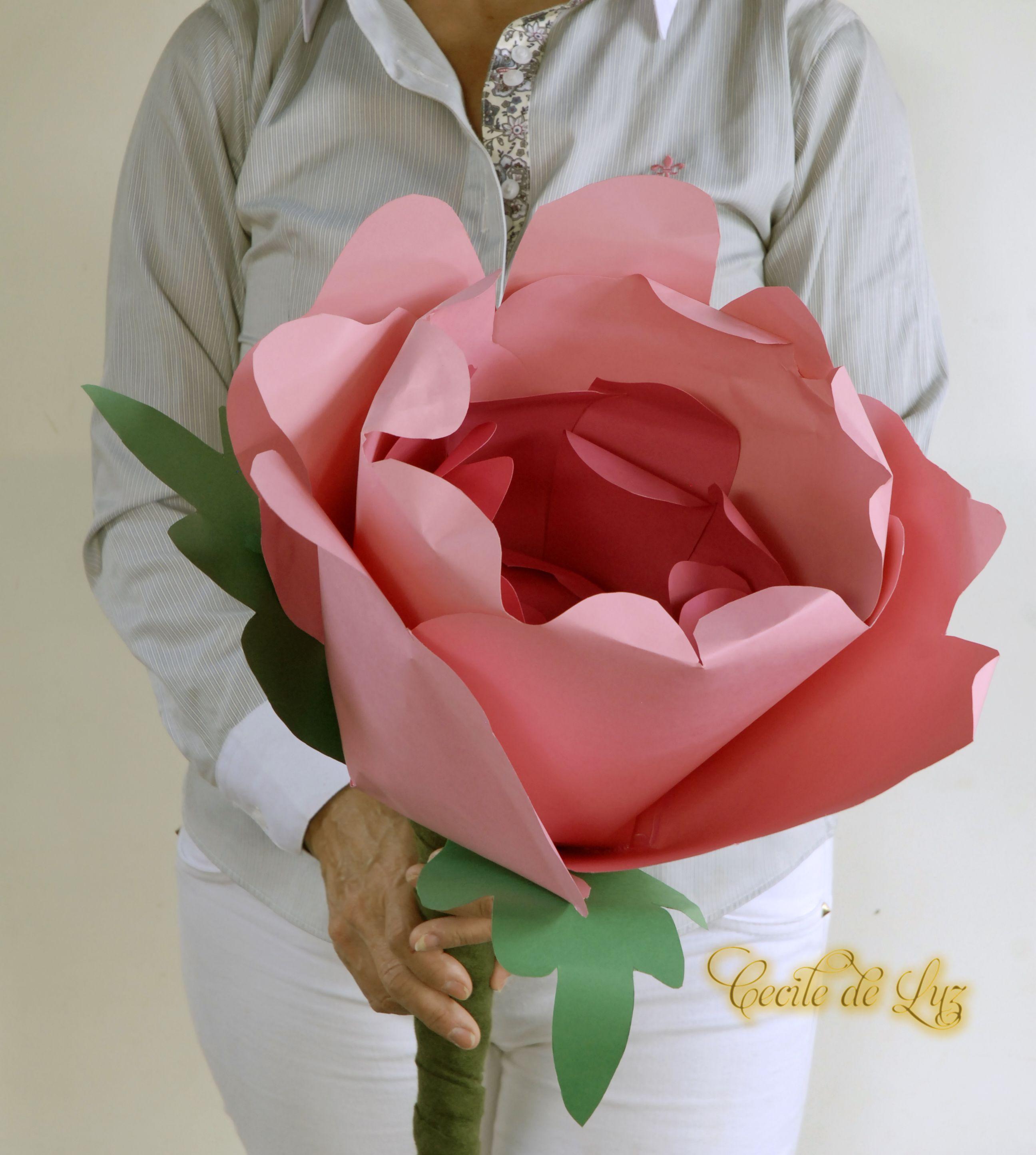 Boto De Penia 50 Cm Flowers From Paper Pinterest