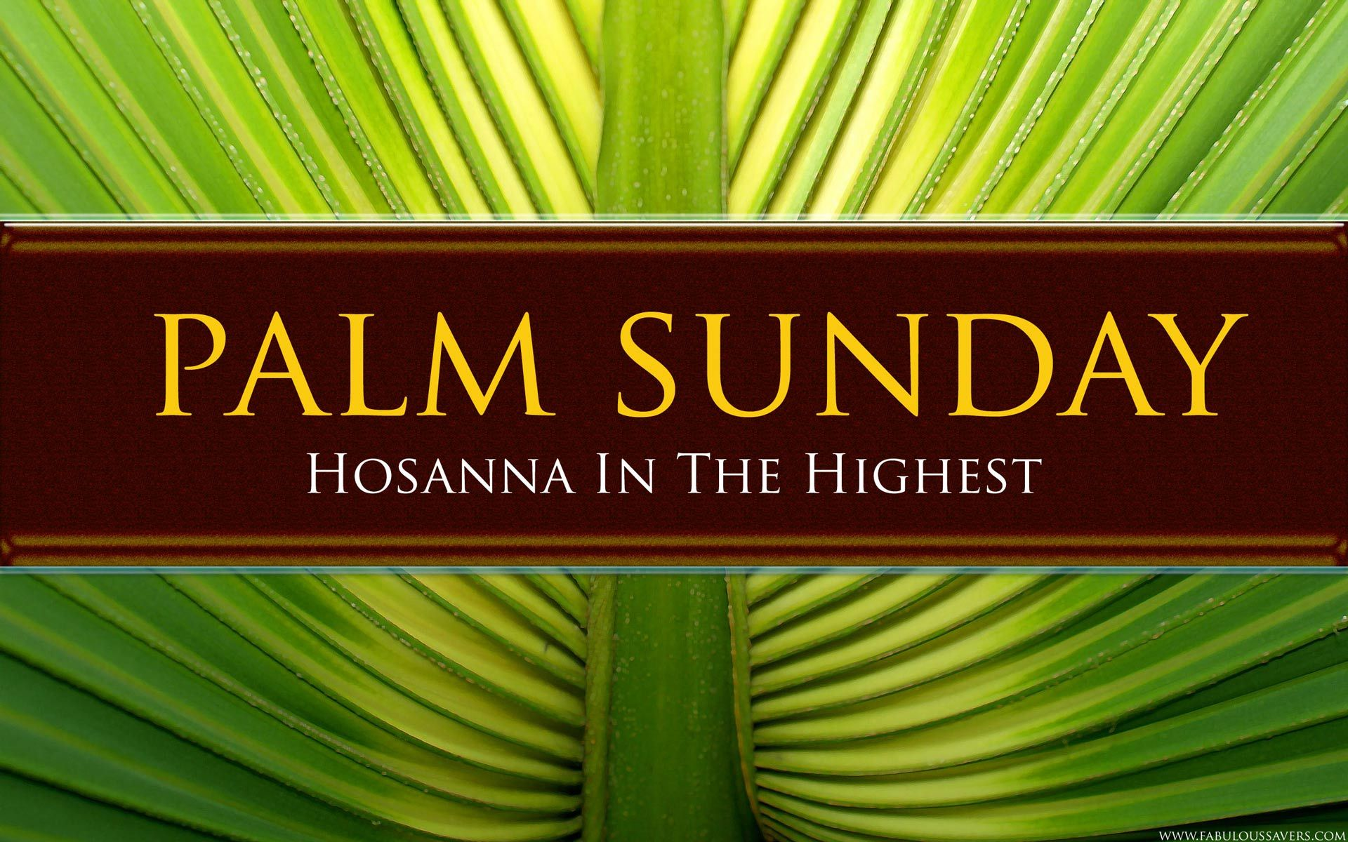 Palm Sunday 2014 Background First Church Williamstown
