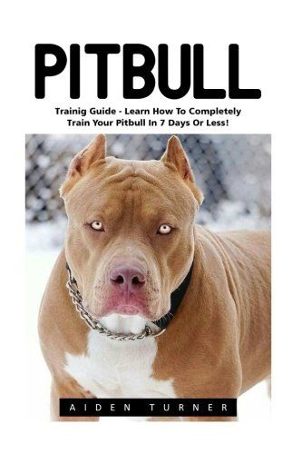 Meet Hulk The Pitbull The Biggest Pit Dog Of Dark K9 Dynasty