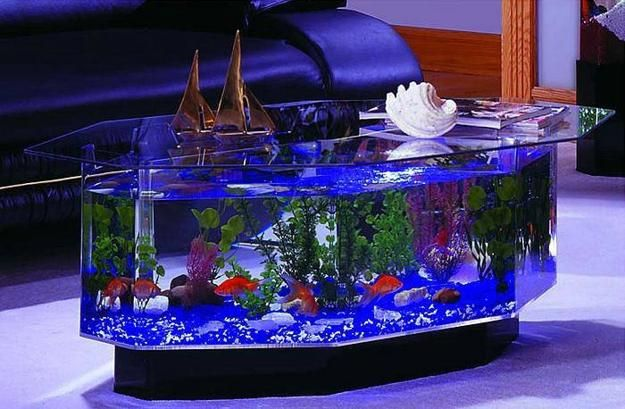 Homes With Beautiful Fish Tanks   Now Hiring M.C.A Looking For Online  Marketers Training Is Available