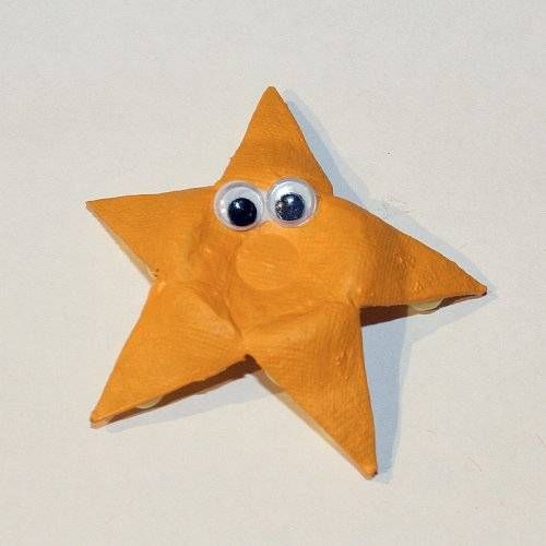 egg carton starfish