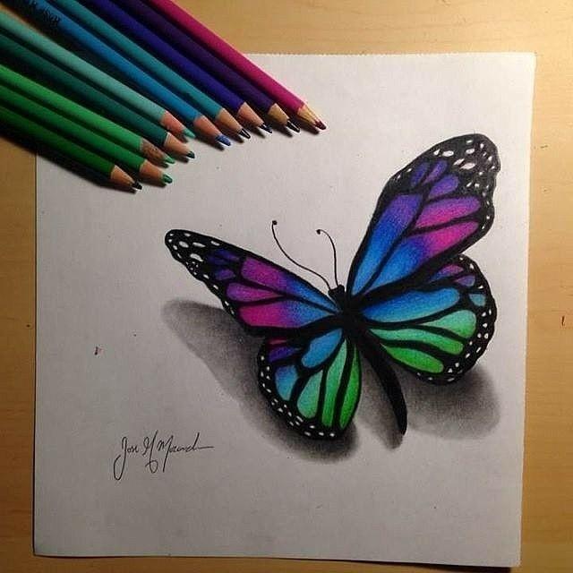 Dibujo De Una Mariposa Como Dibujar Mariposas Mariposas De Colores Dibujos Cuadros De Mariposas