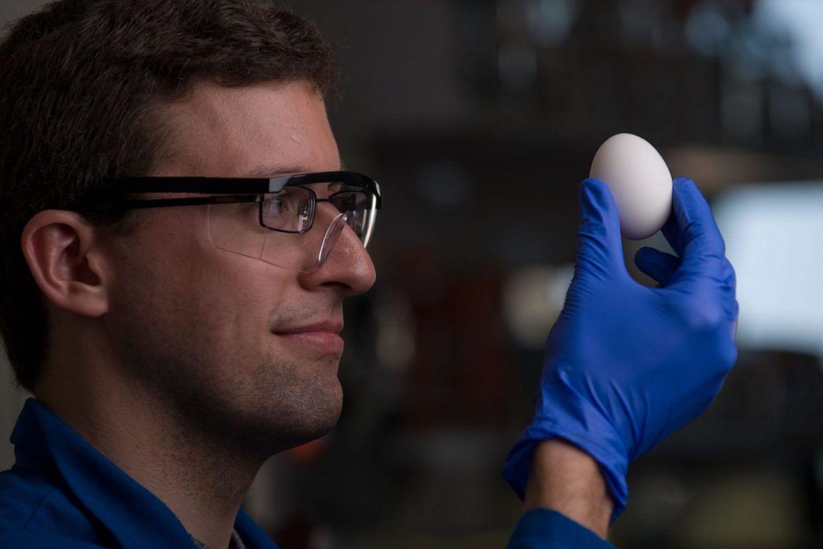 Pin On Biotecnologia
