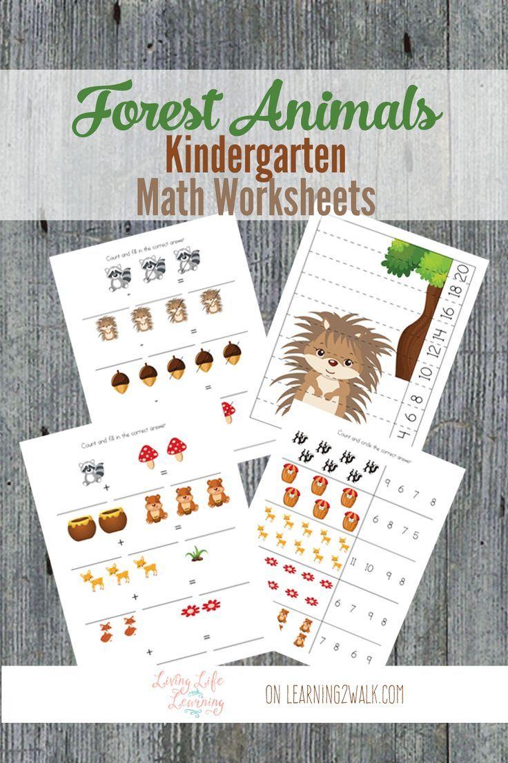 Forest Animals Kindergarten Math Worksheets Kindergarten Math Worksheets Forest Animals Kindergarten Math [ 1104 x 736 Pixel ]