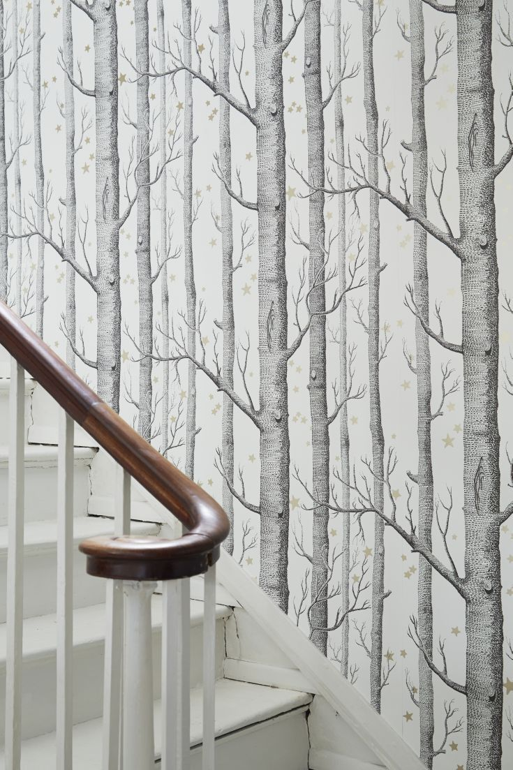 Woods And Stars By Cole Son Black And White Wallpaper Wallpaper Direct Hallway Wallpaper Wallpaper Stairs Birch Tree Wallpaper