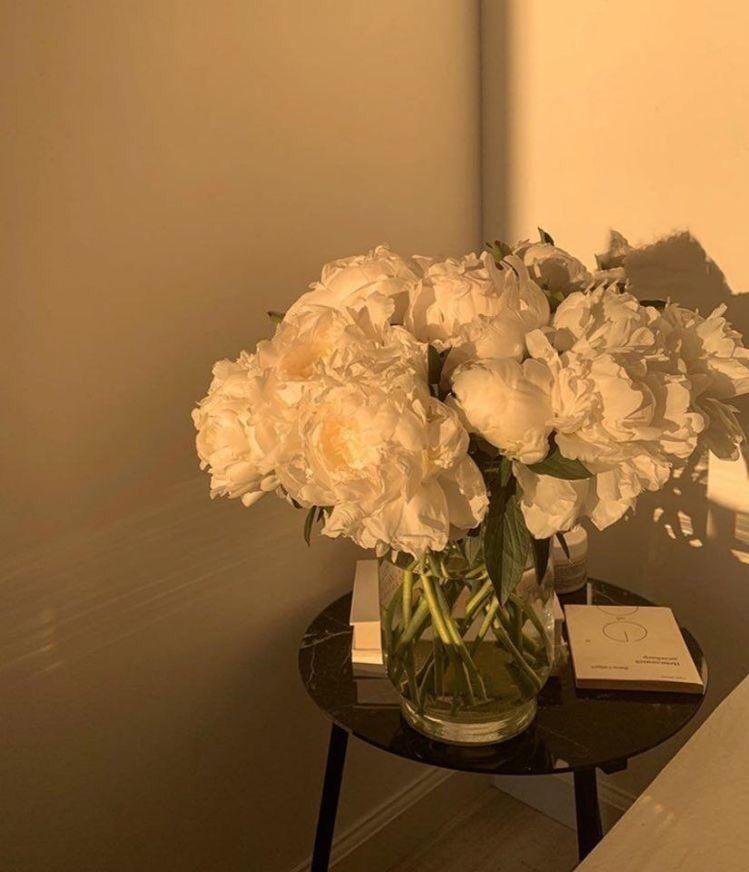 Flowers 🌺 on