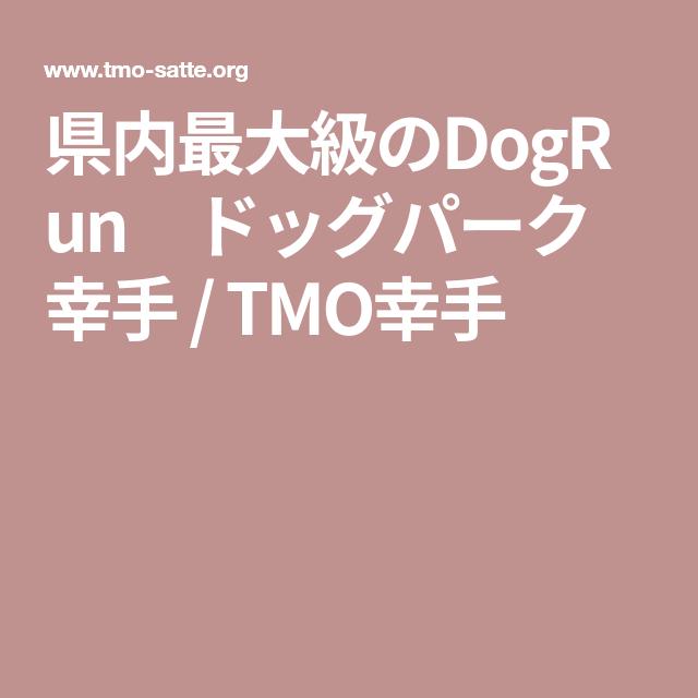 県内最大級のdogrun ドッグパーク幸手 Tmo幸手 幸手 お出かけ カフェ