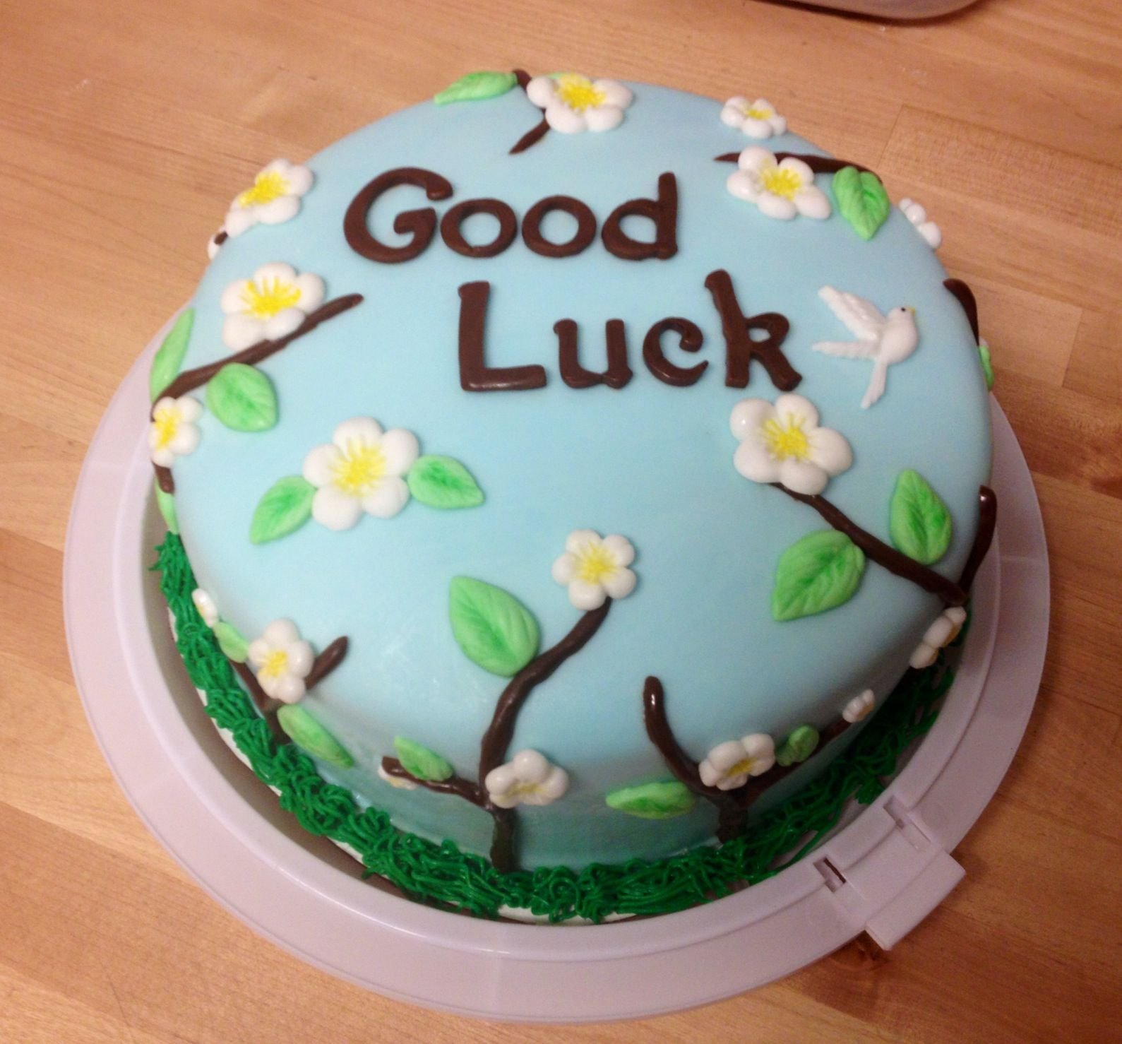 Good Luck Cake With Images Cake Cupcake Cakes Cake Recipes
