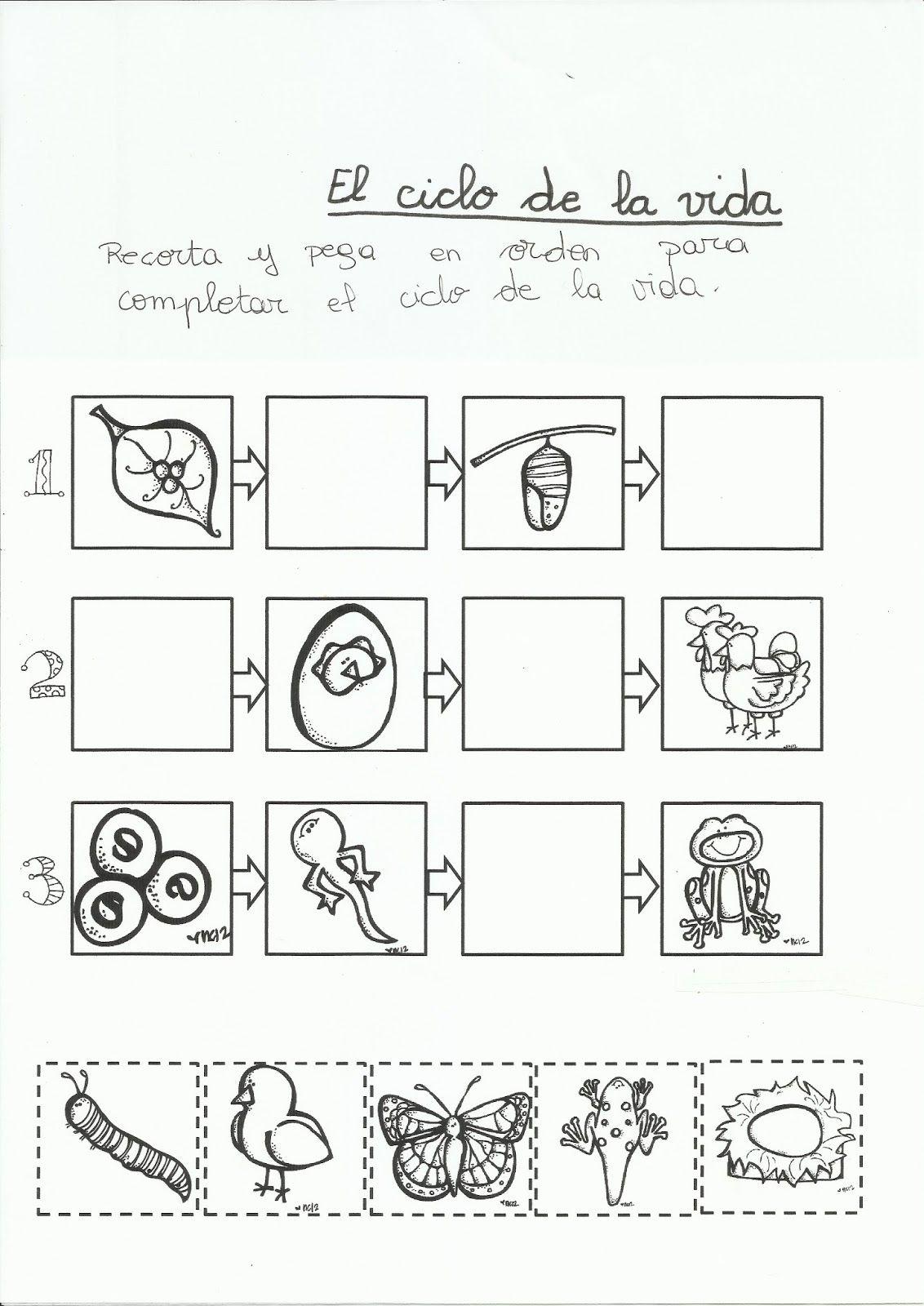 Qué puedo hacer hoy?: Sobre animales   Actividades en Ed. Infantil ...