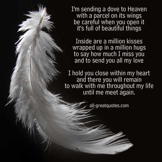Im Sending A Dove To Heaven In Loving Memory Poem Cards Quotes