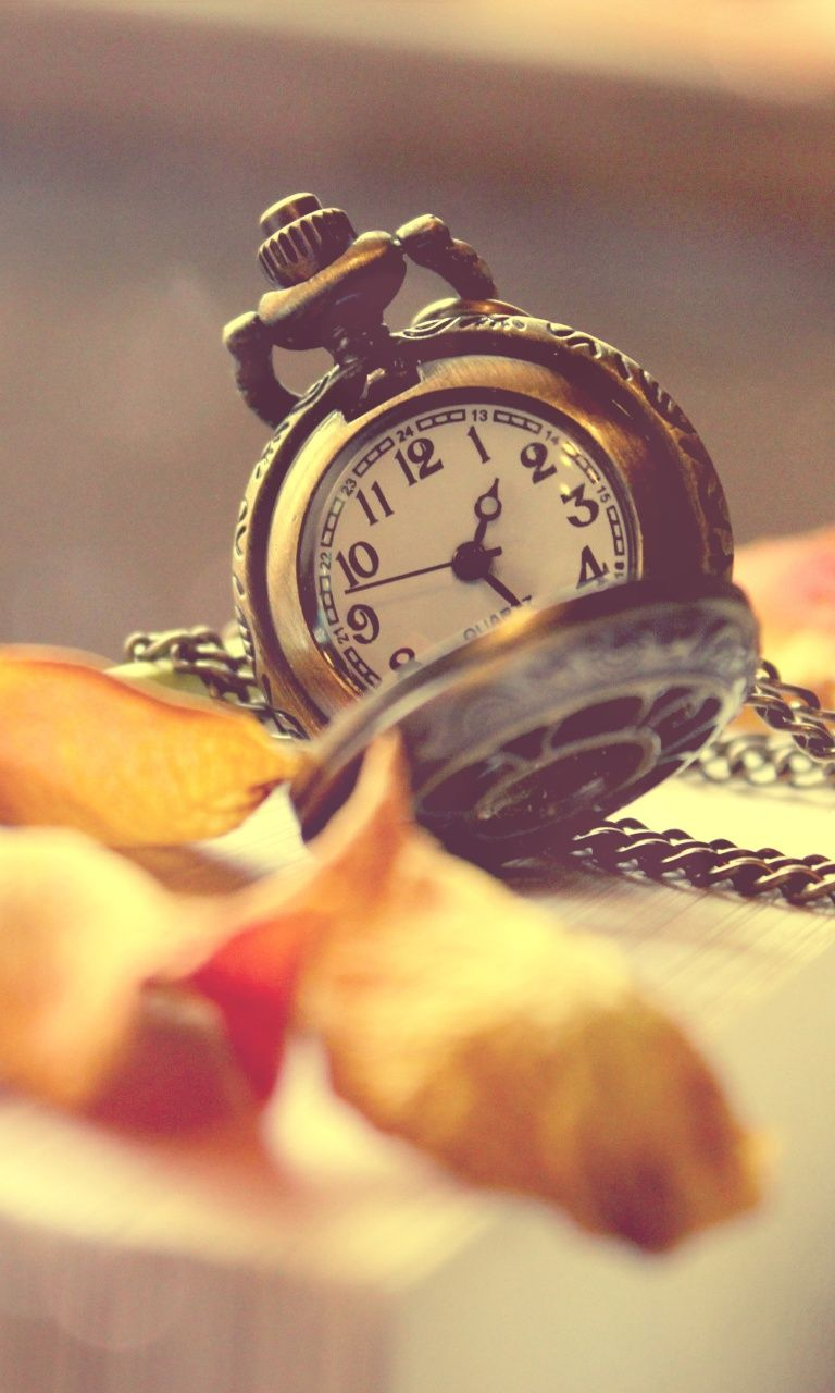 Vintage Watch And Petals - Beautiful iPhone wallpapers