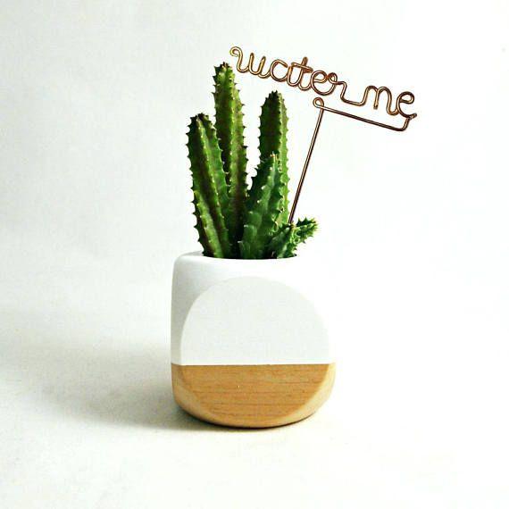 Nursery Indoor Plants Near Me: Wire Desk Plant Markers