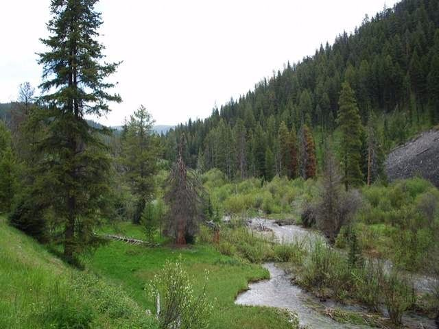 82 Acres of Unforgettable Recreational Property in