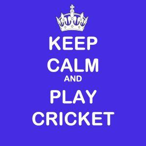 Keep Calm and Play Cricket KeepCalm Whatsapp DP Calm