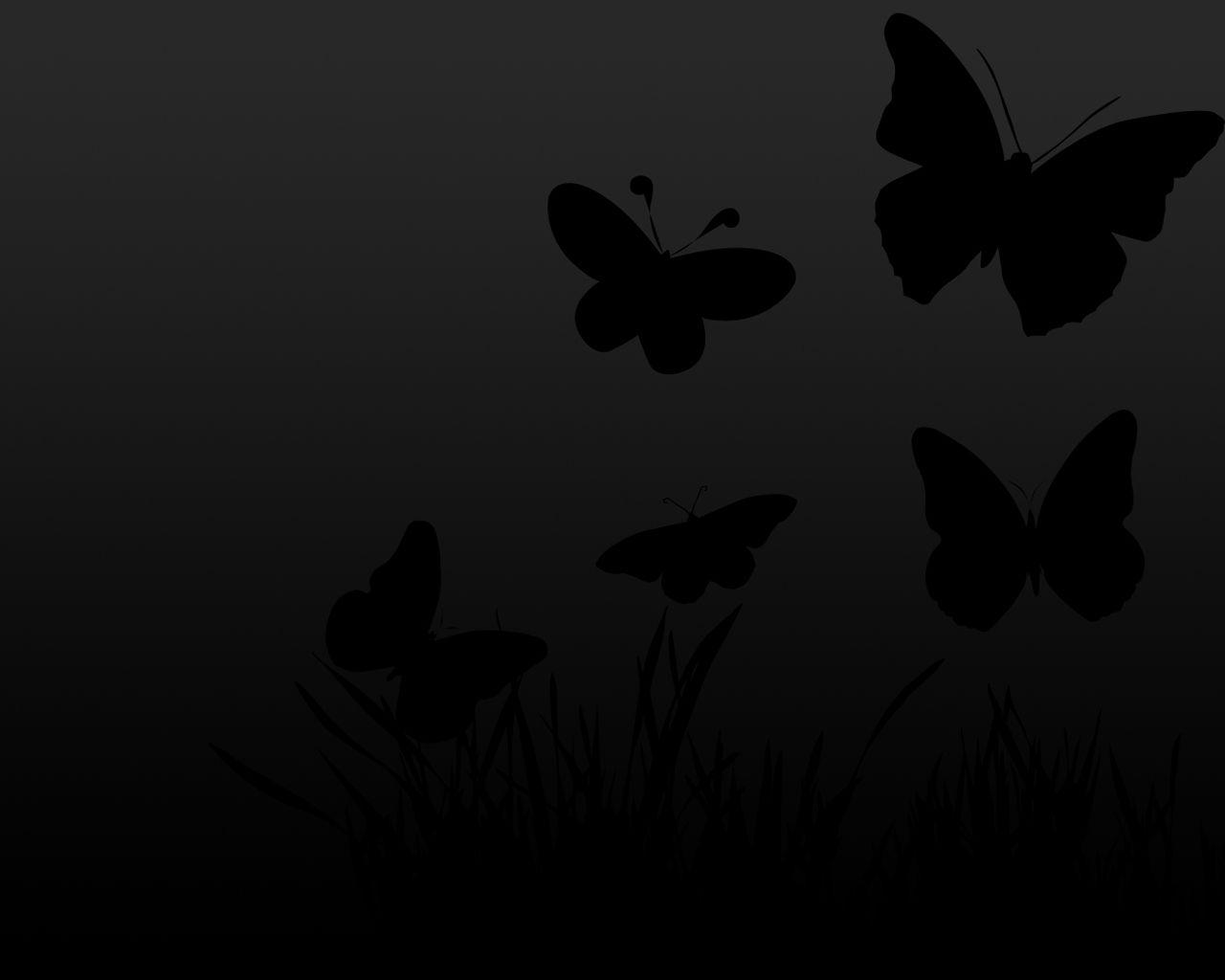 Black Butterfly Wallpaper 1280x1024 Jpg 1280 1024 Pixels Butterfly Wallpaper Backgrounds Butterfly Wallpaper Black Wallpaper