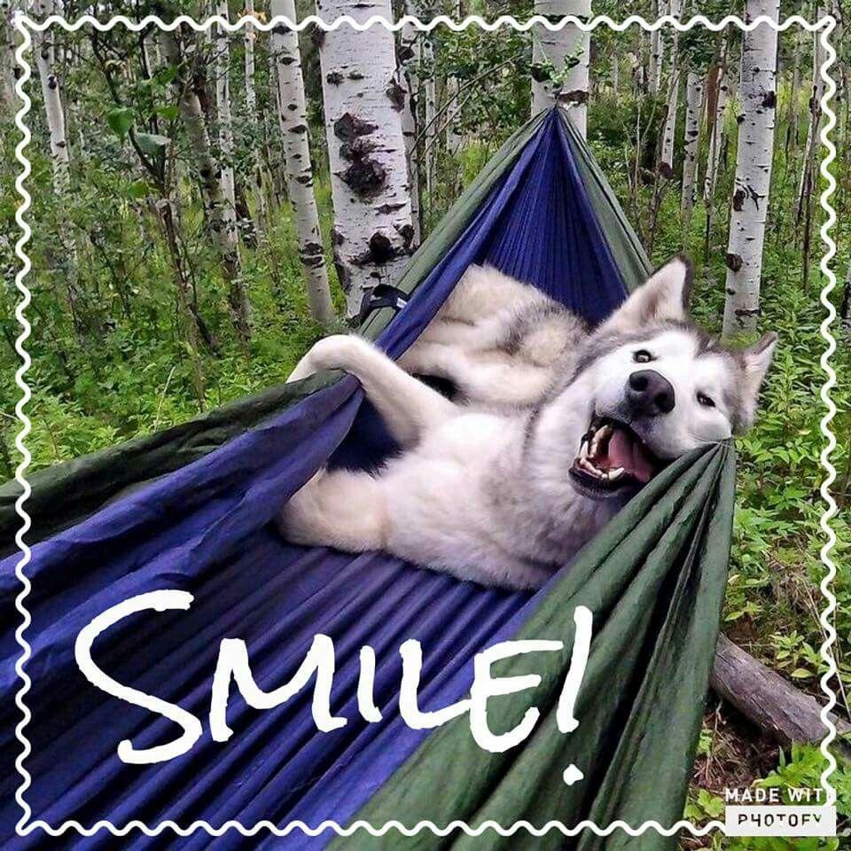 Una sonrisita :-D