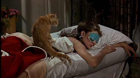 """""""I'm like cat here, a no-name slob. We belong to nobody, and nobody belongs to us."""""""