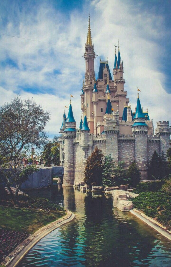 Pin By Selenbella On خلفيات Disney World Pictures Disney World Disney Pictures