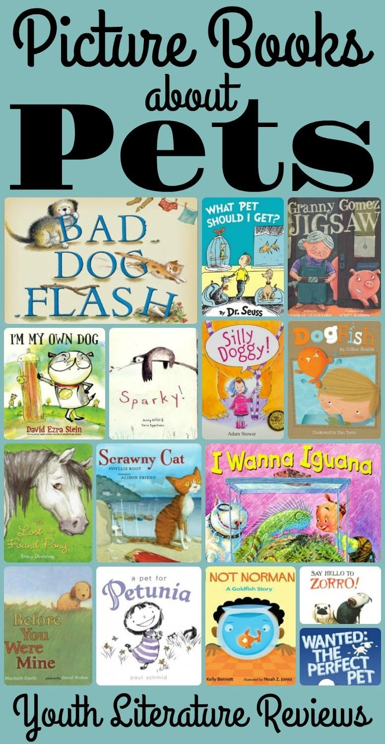 Picture Books About Pets Pets Preschool Animal Books Picture Book