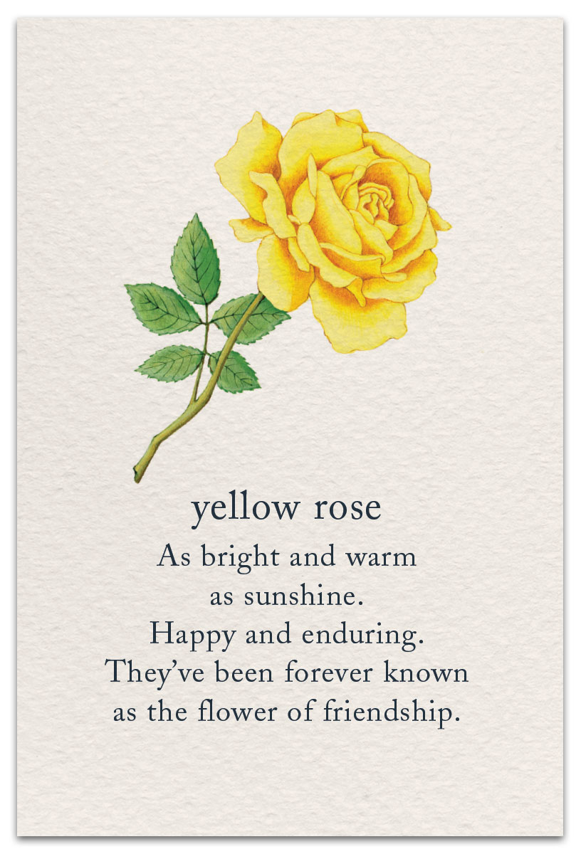 Yellow Rose Birthday Card Cardthartic Com Flower Quotes Yellow Roses Flower Meanings