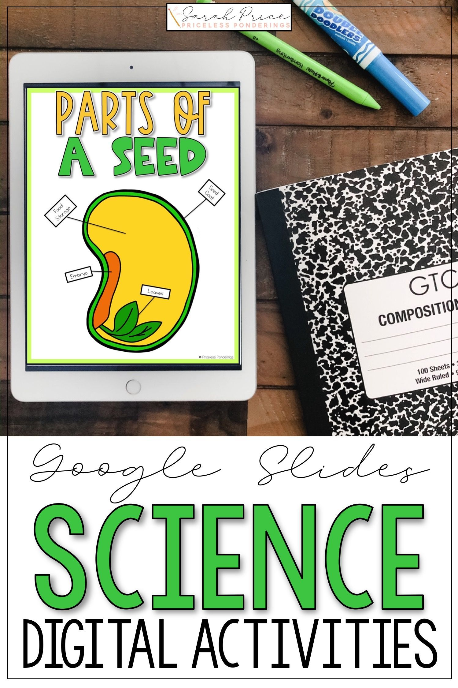 Parts Of A Seed Activities For Distance Learning In