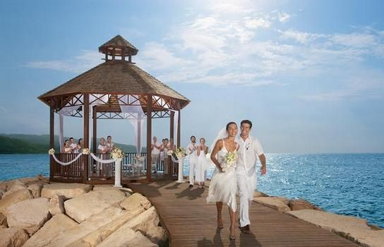 Wedding Secrets Wild Orchid
