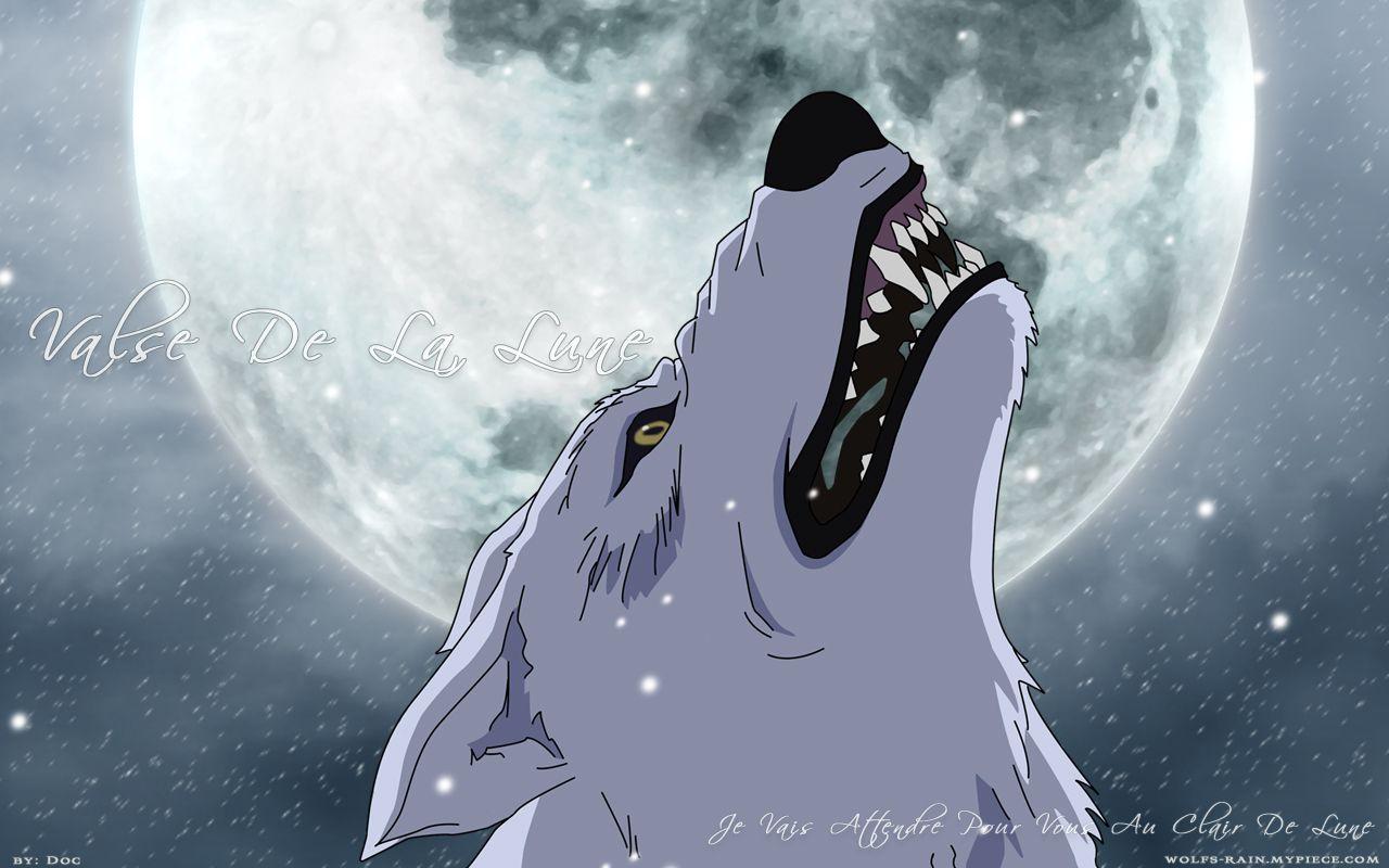 Wolf S Rain Computer Wallpaper Desktop Background 1280x800 Id 231133 Wolf S Rain Anime Wolf Anime