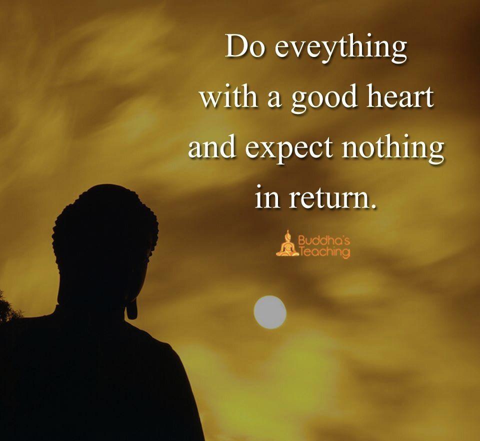 Buddhist Quotes On Love Kindness  Gratefulthankfulpeaceful☀ Present  Pinterest