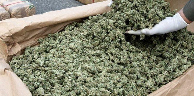«Μπλόκο» στην Ιωαννίνων - Κακαβιά για 50 κιλά χασίς κρυμμένα σε σάκους