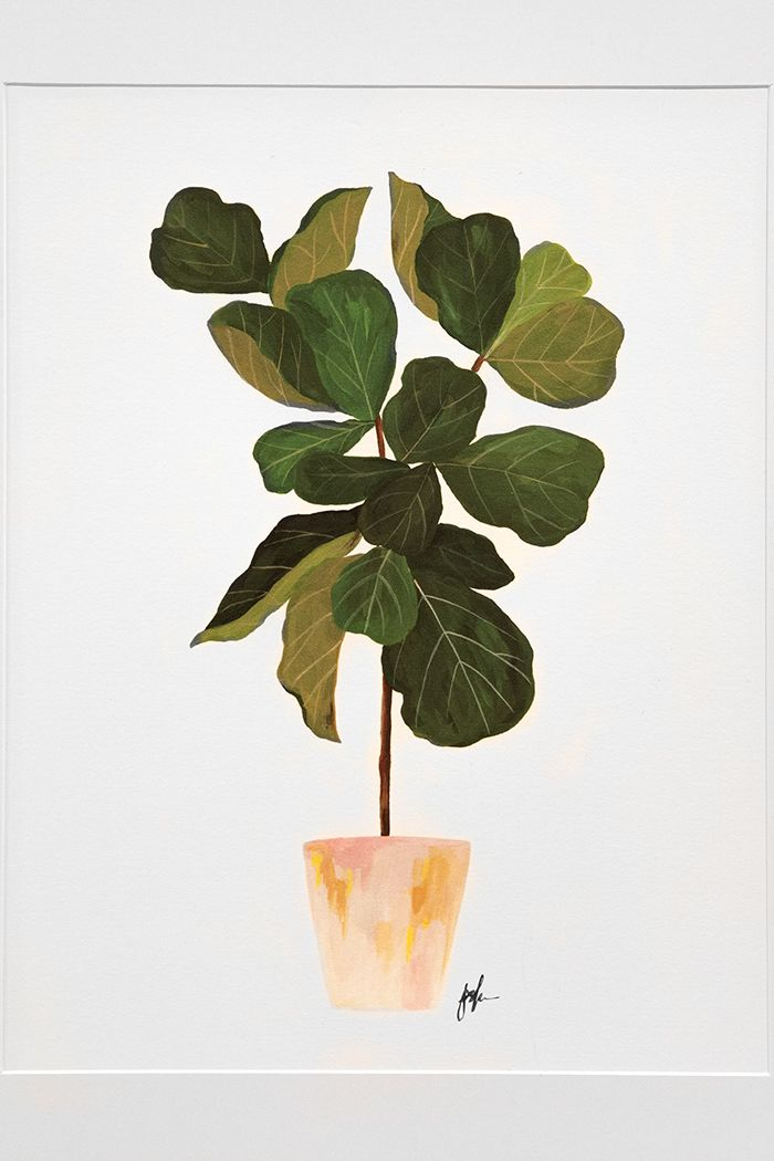 stunning house plants delivered. The National Stationery Show  House Plants Design Sponge This
