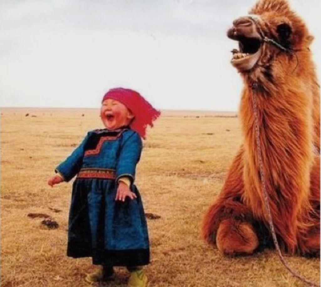Via Space For Inspiration Ausgestopftes Tier Tiere Lachende Kinder