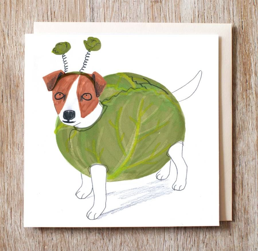 Dog Christmas Cards Grinsgiggles Pinterest Christmas Cards