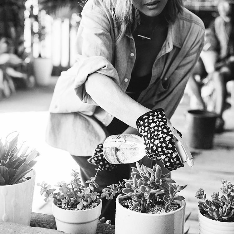 This Sunday April 24th from 10:30am-1pm @VNTGPOP will be hosting their first workshop in their Flower Fiesta series: Succulent Edition. Mimosas teas and treats from @Cafe86 will be served along with a succulent gardening kit! Click the link in the bio to register     #DTLATimes #DowntownLA #DTLA #LA     # @popannemarie79 by dtlatimes