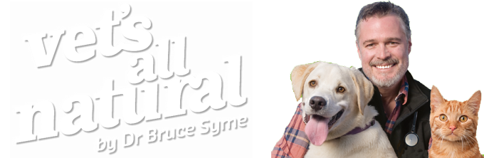 Treating Struvite Stones and Crystals Naturally in Dogs