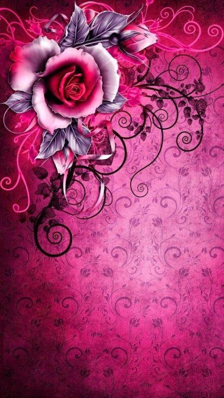 Wein Und Rosen Flower Wallpaper Rose Flower Wallpaper Rose Wallpaper