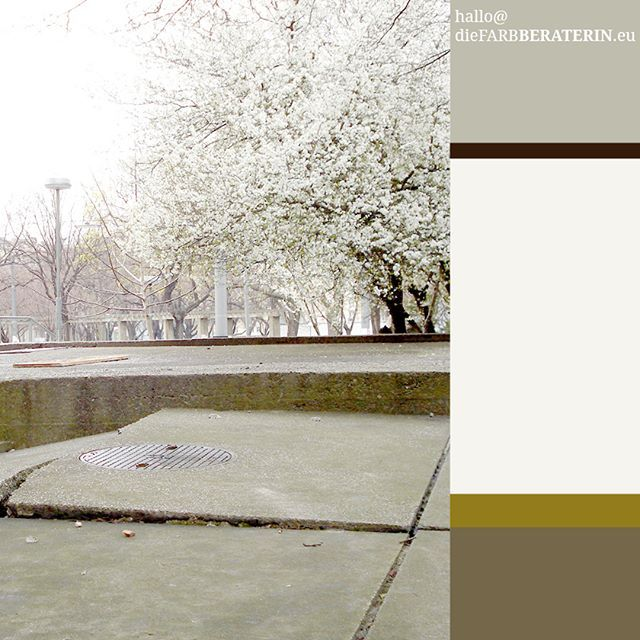 Farbinspiration #frühlingsblüte #blühender #baum#farbpalette ... Farbgestaltung Zu Braun Beige