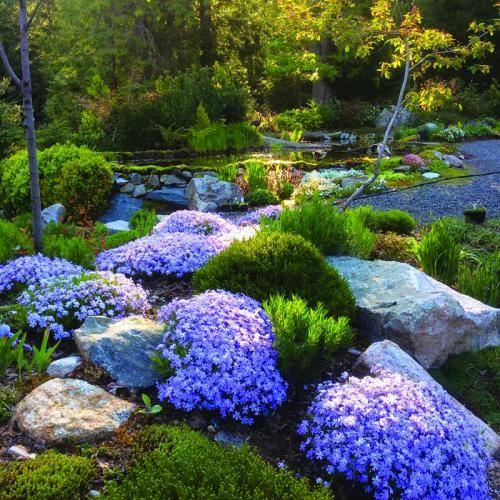 Landscape Designer Wynn Nielsen Shares Her Top Tips For