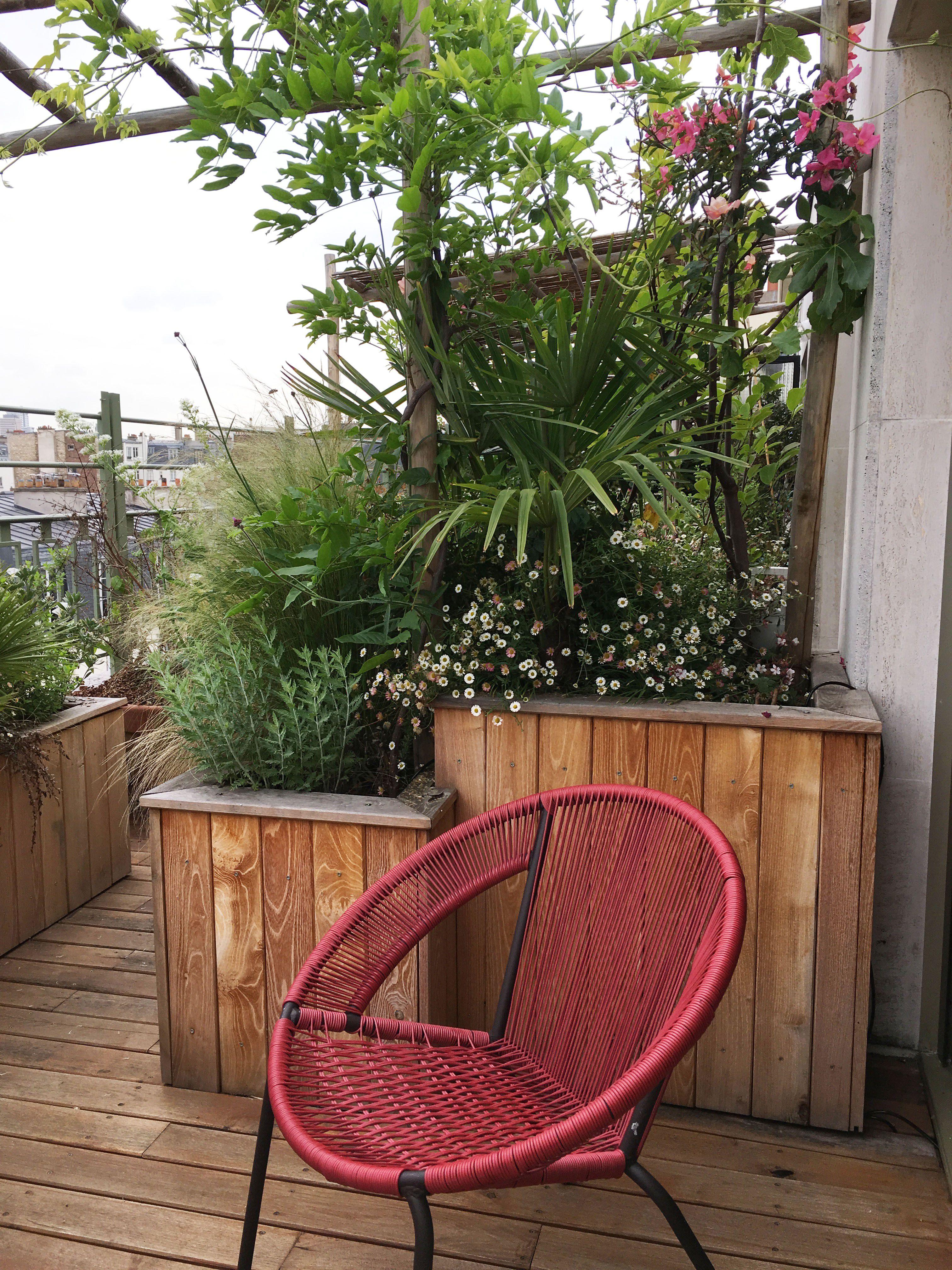 une jolie terrasse remplie de verdure sur les toits de paris par l