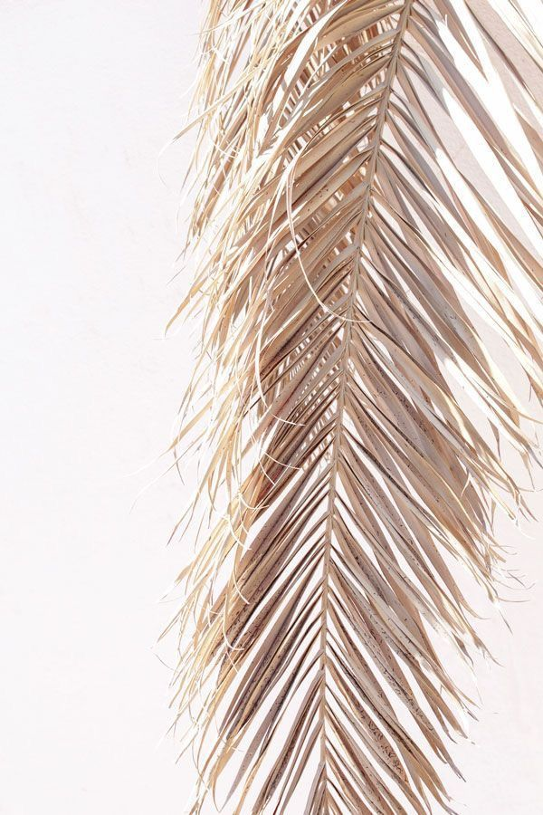 "Kayten Schmidt on Instagram: ""For you, for later"" -   12 planting Texture inspiration ideas"