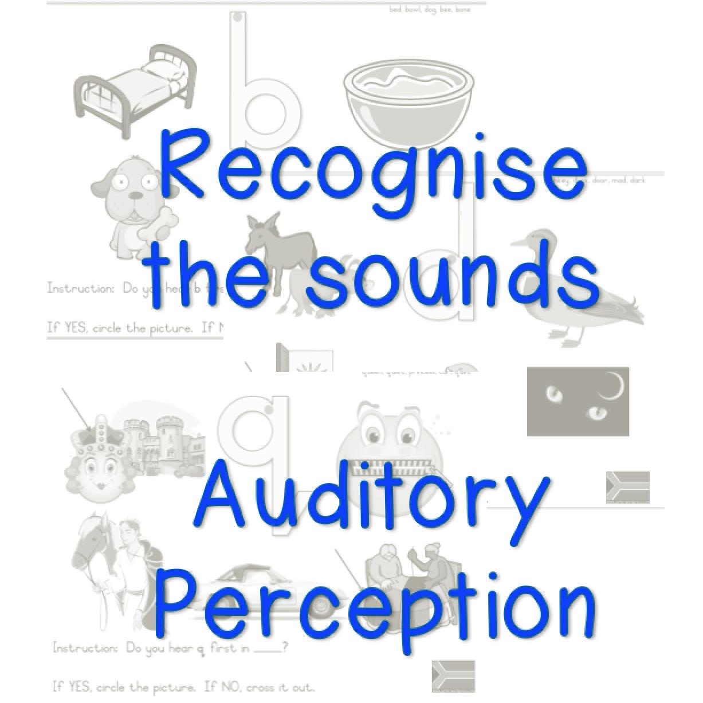 Sounds Auditory Activity