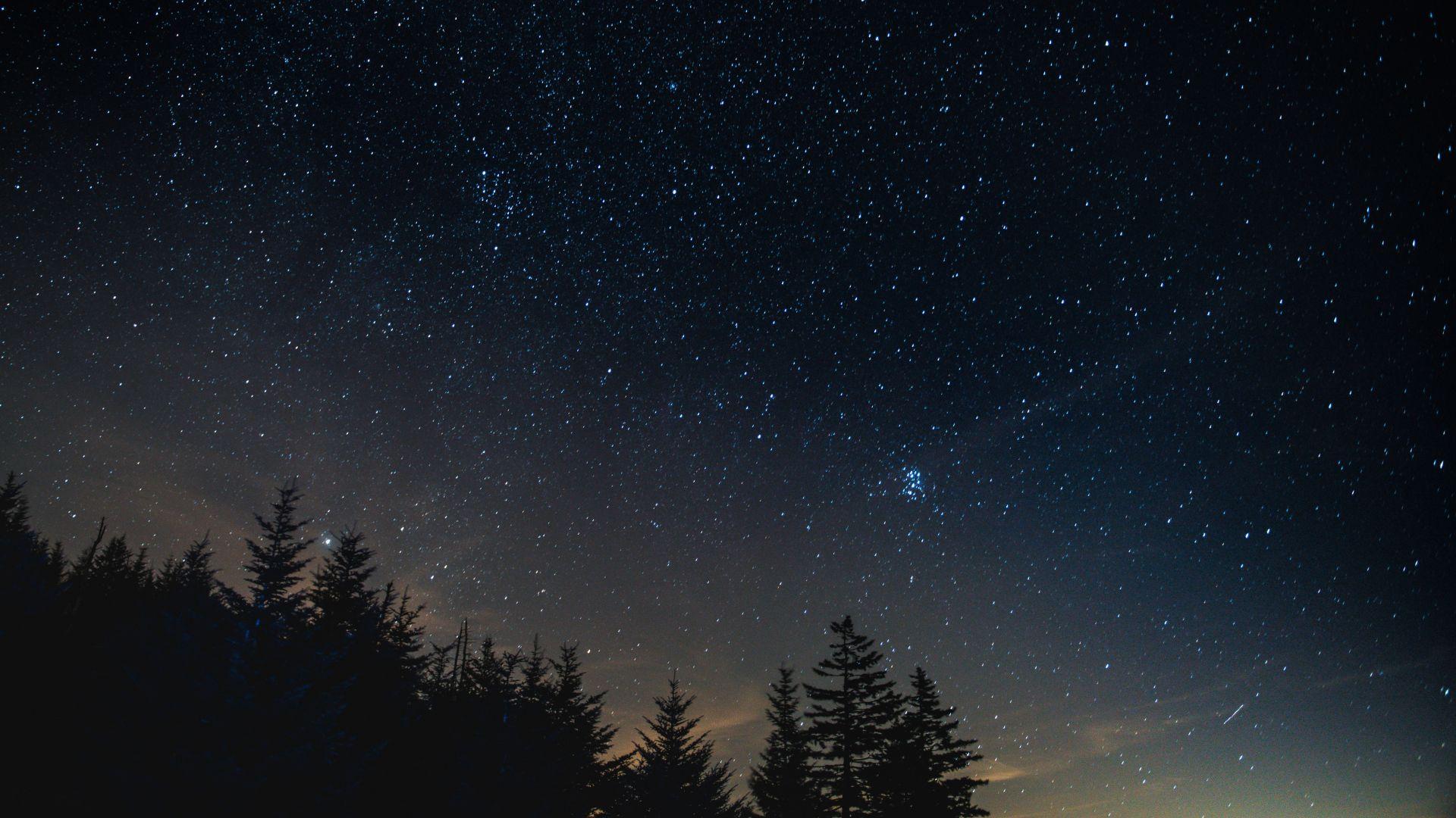 1920x1080 Wallpaper starry sky, night, trees, night