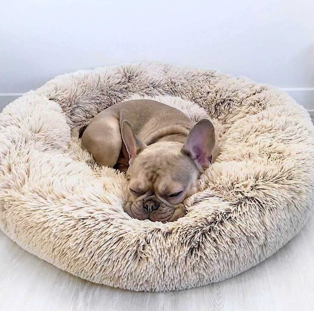 Calming Dog Bed™ Snoozing Pet Beds in 2020 Soft dog