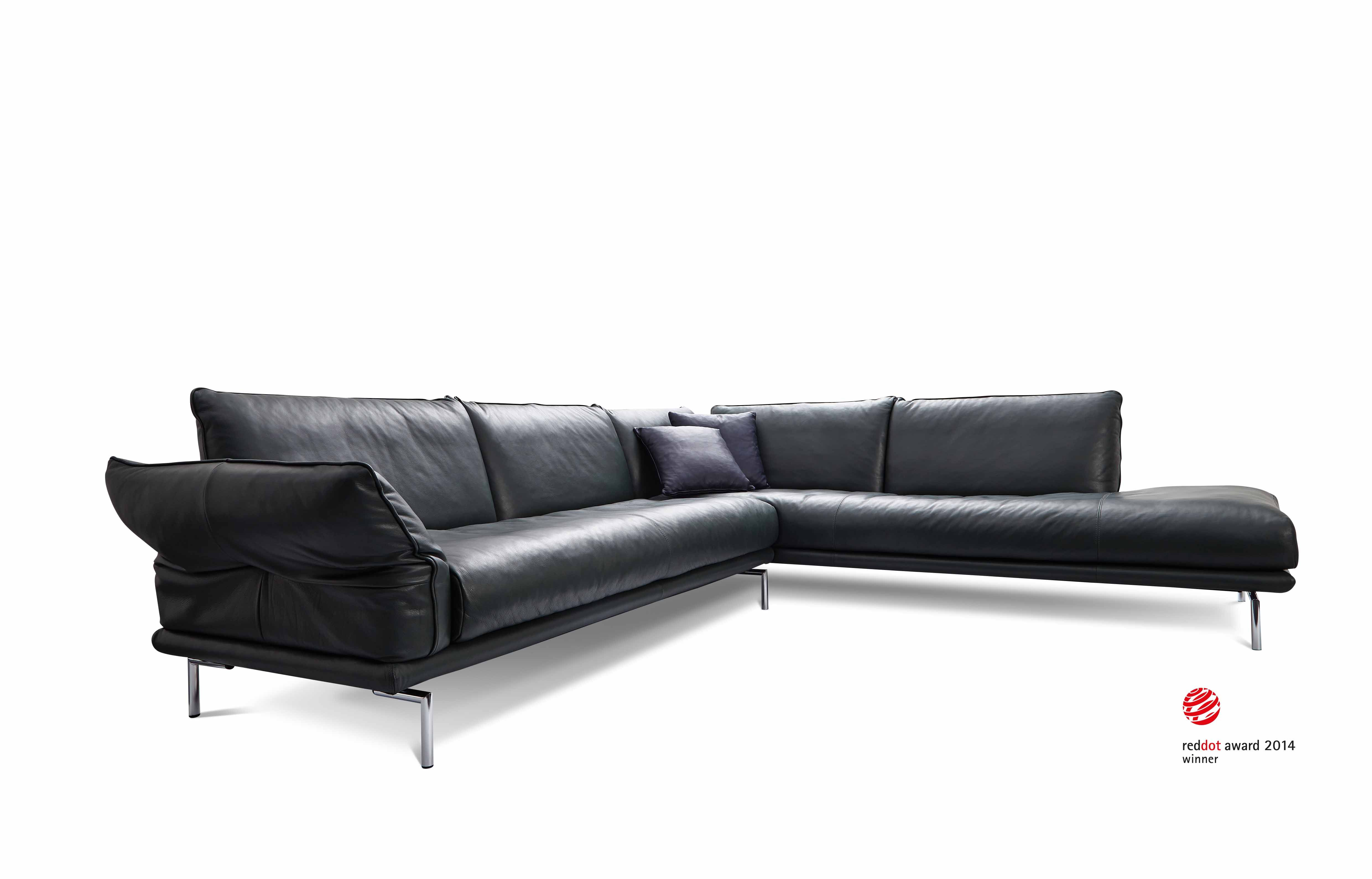 Sofa Beds Denver Co Fred Meyer Bed Machalke For The Home In 2019