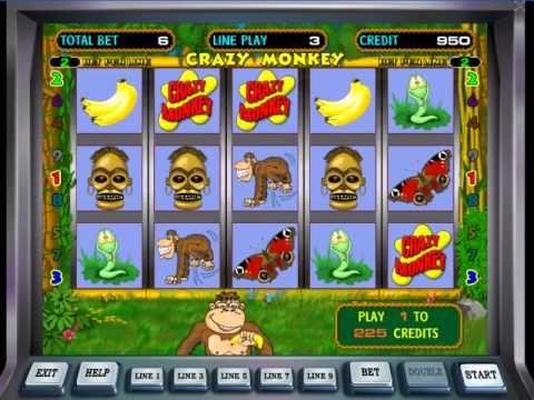 игровые автоматы monkey crazy игры казино