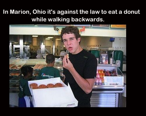 Stupid laws in ohio