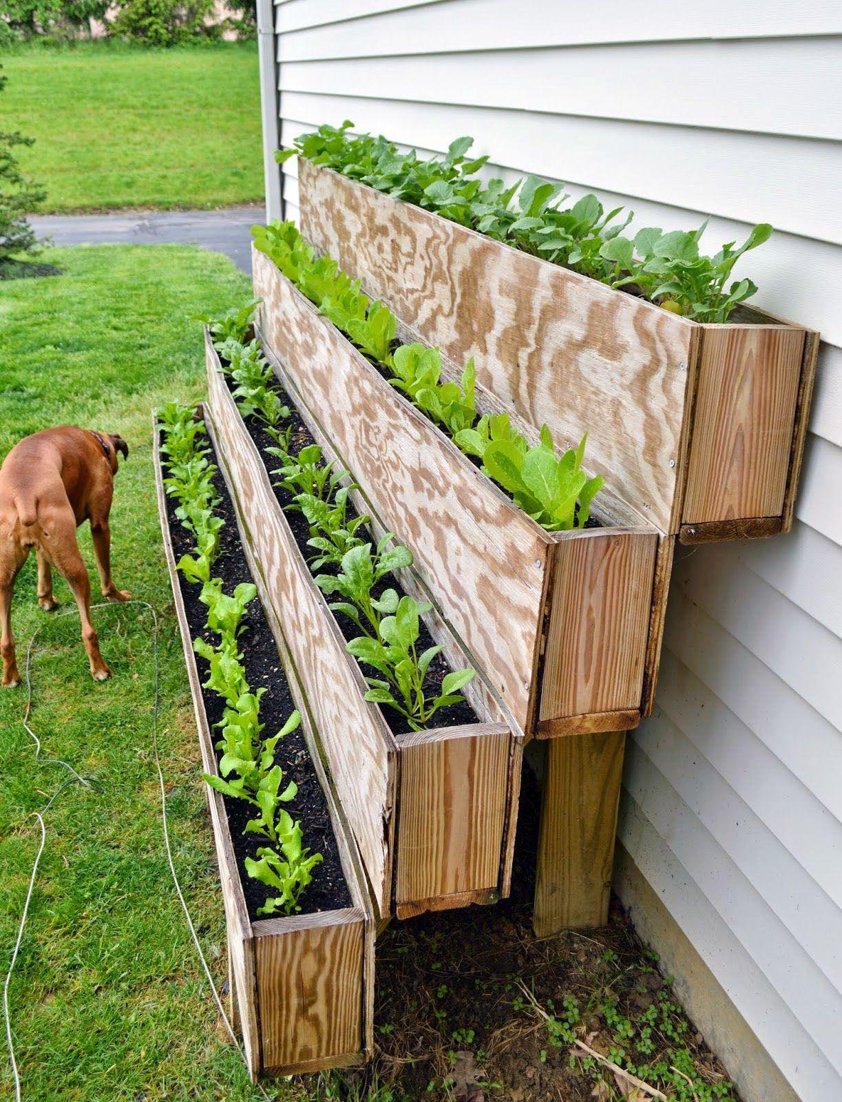 Farmer Boxes You Ll Intend To Do It Yourself Today Urban Garden Vertical Vegetable Garden Growing Food Urban backyard farming ideas