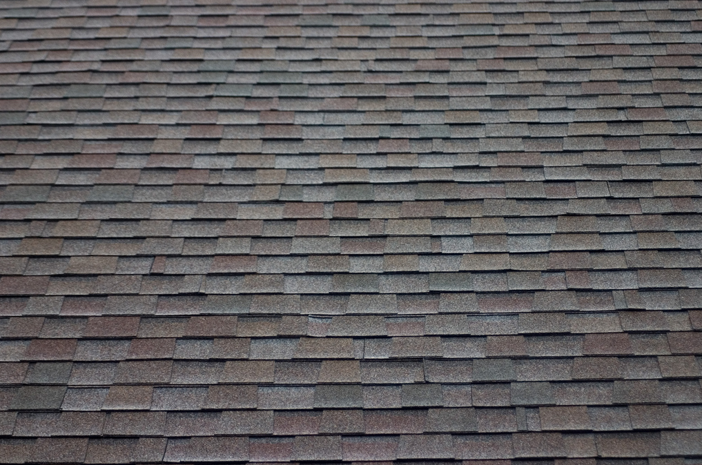 Tdf Blog Sharing Everything Asphalt Roof Shingles Roof Architecture Types Of Roof Shingles