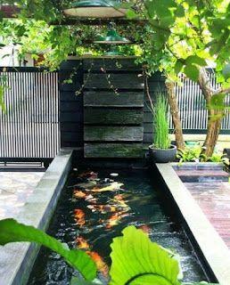 jasa kolam minimalis surabaya murah dan bergaransi - alam