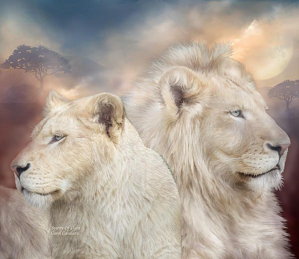 Amazing art by Carol Cavalaris | Spirit animal art, Lion art, Animals