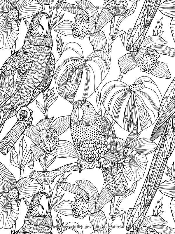 Tropical Adult Coloring Books With Beautiful Blooms Birds And Waters Of The Ocean In Al For
